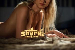 Saunaclub FKK Sharks Banner